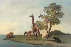 ours,giraffe vaches and birds